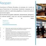 Asopan-web (2)